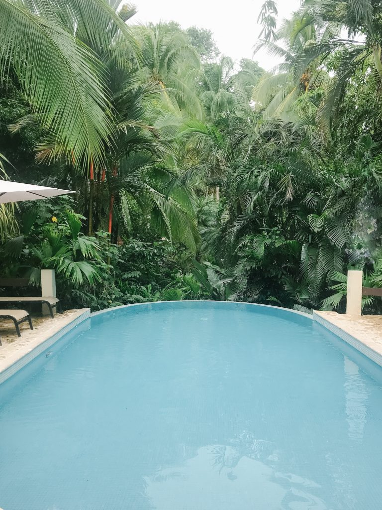 The Falls at Manuel Antonio hotel pool and property