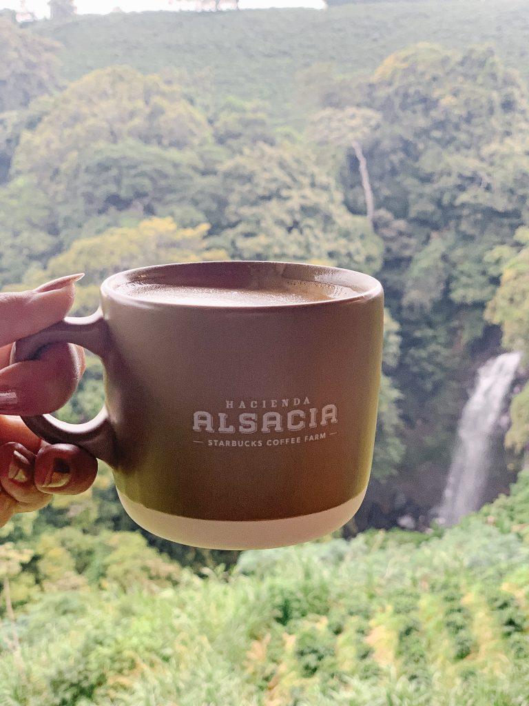 Starbucks hacienda Alsacia Coffee farm Costa Rica
